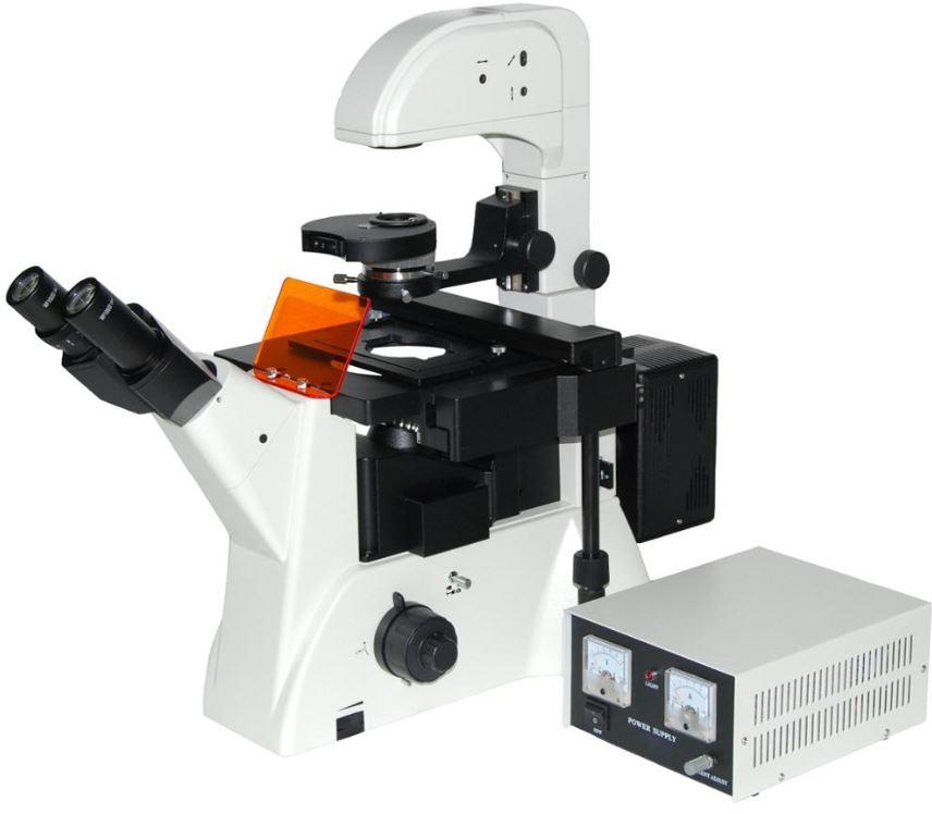 Mikroskop Medan terang (BFM)