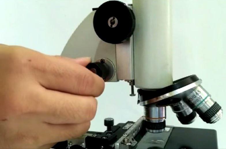 atur mikroskop menggunakan mikrometer untuk memperjelas